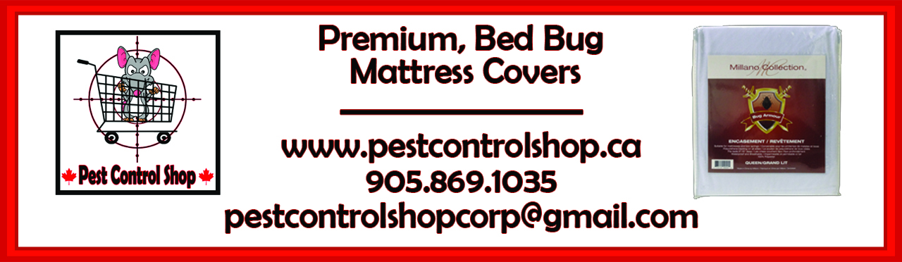 Bed Bug Advertisement