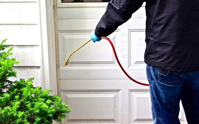 Avoid Making These 3 Pest Control Mistakes!